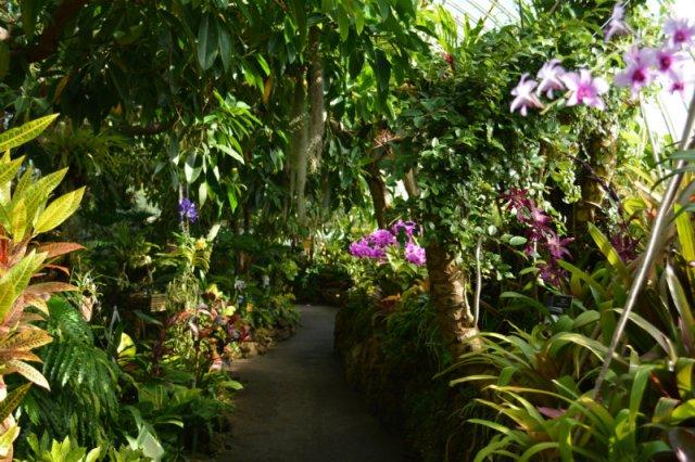 Phipps Conservatory Garden
